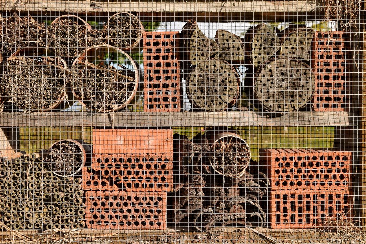 Divé včely sú užitočné, aj keď nedávajú med