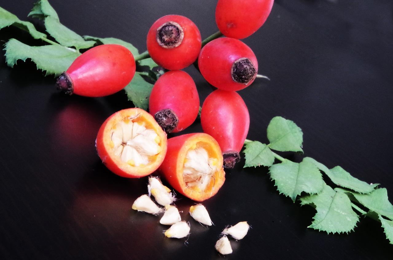 Pestujte šípky vo svojej záhrade
