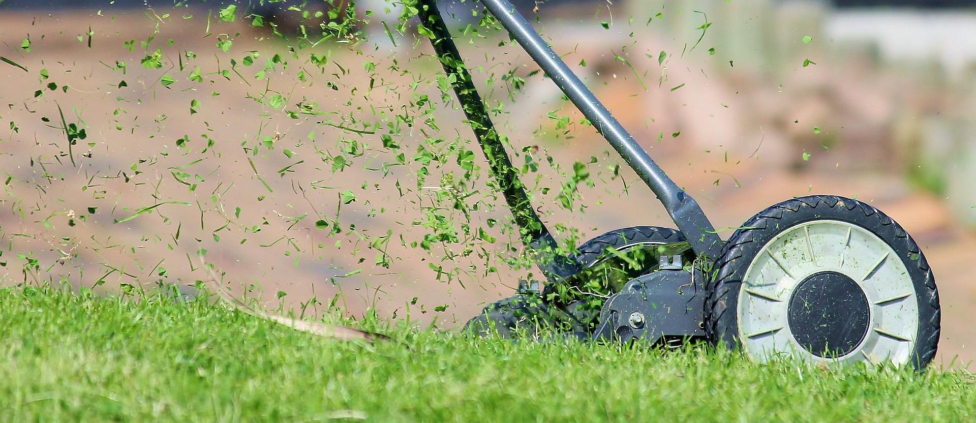 Radca ako vybrať záhradnú kosačku na trávu
